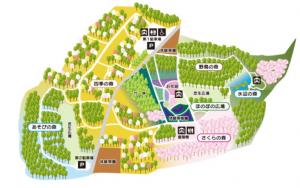 公園内の地図