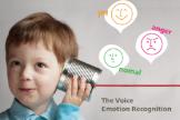 音声感情認識技術